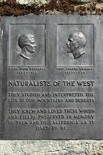 The Grinnell plaque