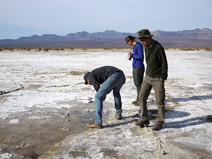 Seth looks for signs of life in a briny pool at Badwater