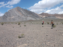 Hiking across the alluvial fan to Bat Mountain