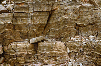 Beck Springs Formation microbialites