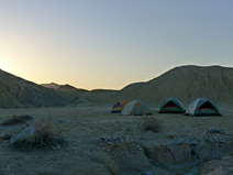 The women's tents at dawn