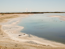 An unpleasant looking section of Salton Sea shoreline