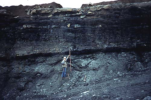 Stratigraphy Of The Carboniferous