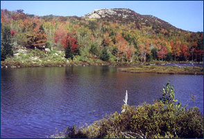 Lake at Acadia National Park, Maine