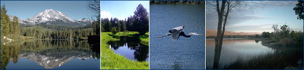 Ponds and lakes photos