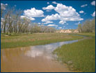 A riparian wetland in eastern Colorado