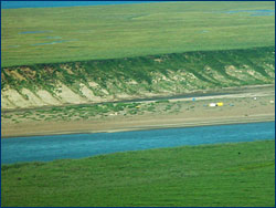 Tundra along the Colville River, Alaska