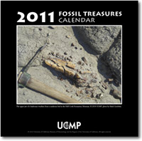2011 UCMP Fossil Treasures Calendar