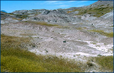 Typical badlands outcrop from the Two Medicine Formation in the Willow Creek Anticline