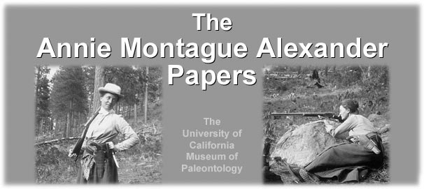The Annie Montague Alexander Papers