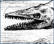 Huff's 