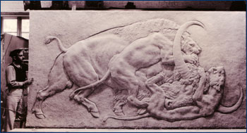 Huff standing next to  his bas-relief of American lions attacking an extinct bison