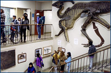Visitors check out hall and stairway exhibits in the Earth Sciences Building