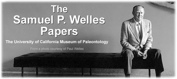The Samuel P. Welles Papers