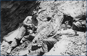 Sam Welles and Charles Camp excavating fossils in New Mexico, 1938