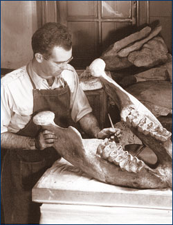 WPA preparator works 