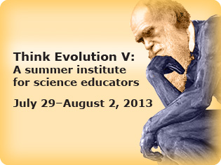 Think Evolution V