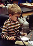 A boy examines microfossils with a microscope