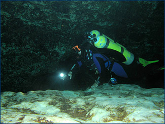 Joey in the Ginnie Springs cave system, Florida