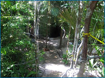 A beautifully landscaped path leads down to the Taj Mahal Cenote entrance