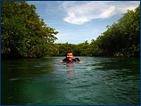 Shane prepares to explore some of the caves amongst the mangrove roots at Casa Cenote