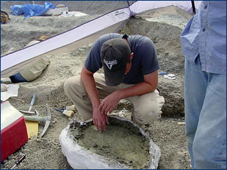 Randy Irmis inspects the bottom side to make sure no fossil bone is exposed