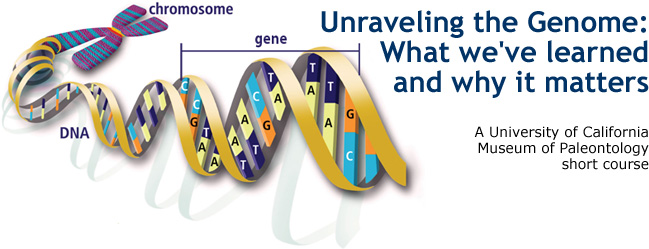 Unraveling the Genome: What we've learned and why it matters