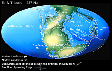 Continental distribution in the Triassic