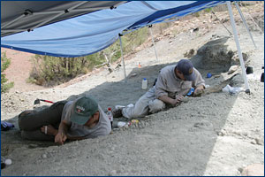 Randy Irmis and Sterling 