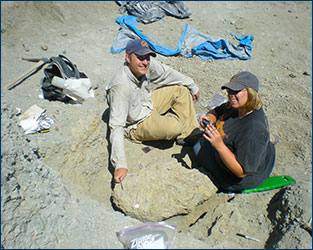 Sterling Nesbitt and Sarah Werning excavate a dinosaur skeleton at the Hayden Quarry.