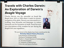 The Darwin display sign