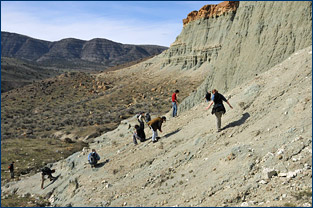 Students collecting at Longview Ranch, John Day Fossil Beds