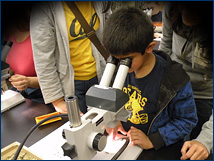 A future Cal Bear looks for microfossils