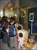 Cal Day visitors stop to admire the HERC/UCMP exhibit