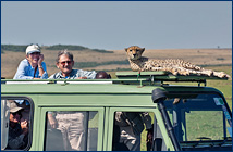 Judy and Roland with a cheetah in Kenya
