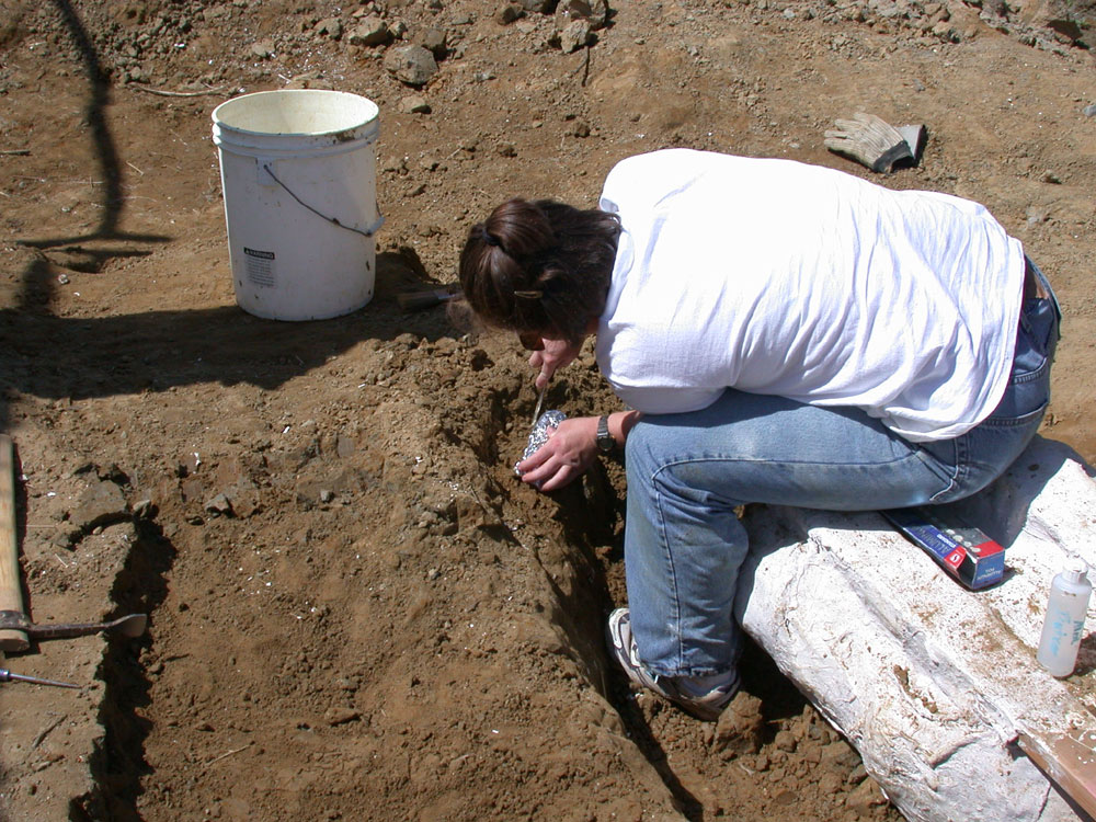 Katie removes some small bone fragments from the ground