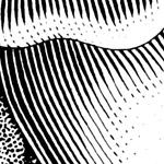 zoomed-in illustration