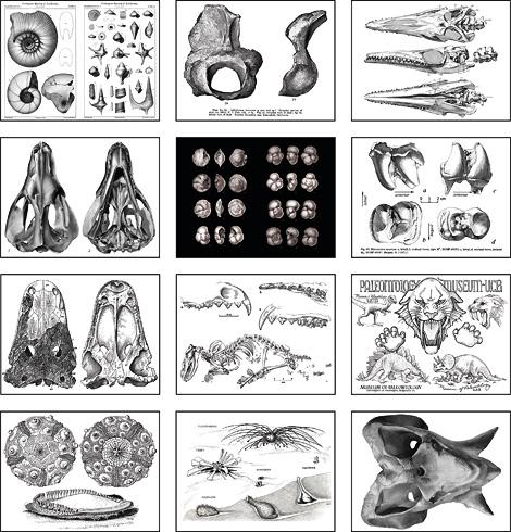 Calendar thumbnail images