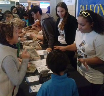 The public enjoys the opportunity to explore fossils and learn more about paleontology from UCMP students. Photo by Renske Kirchholtes