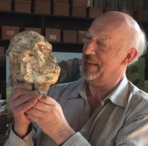 """Famed anthropologist Ron Clarke holding the cranium of """"Littlefoot,"""" a recently discovered South African hominid. Photo by Tesla Monson"""