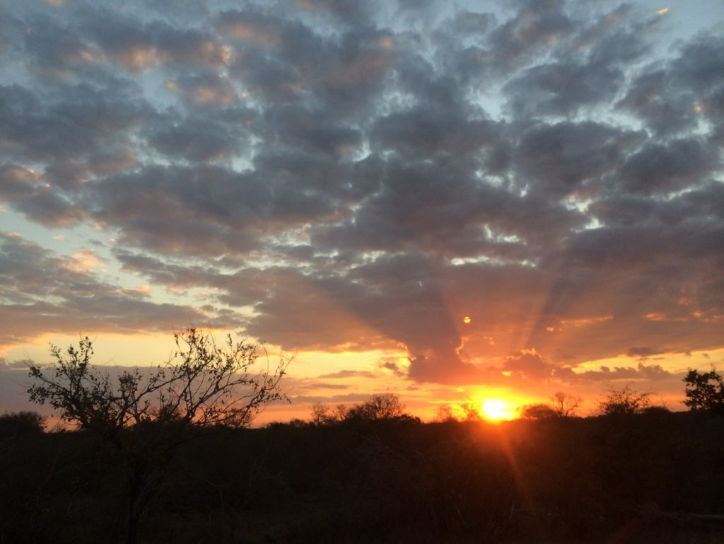 The sun sets over Kruger National Park, South Africa. Photo by Tesla Monson