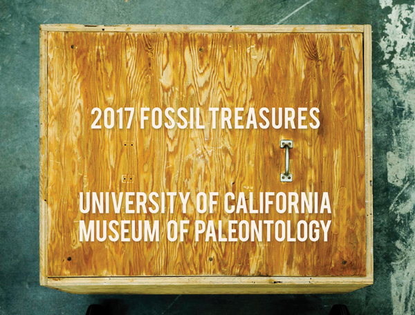 2017 Fossil Treasures Calendar