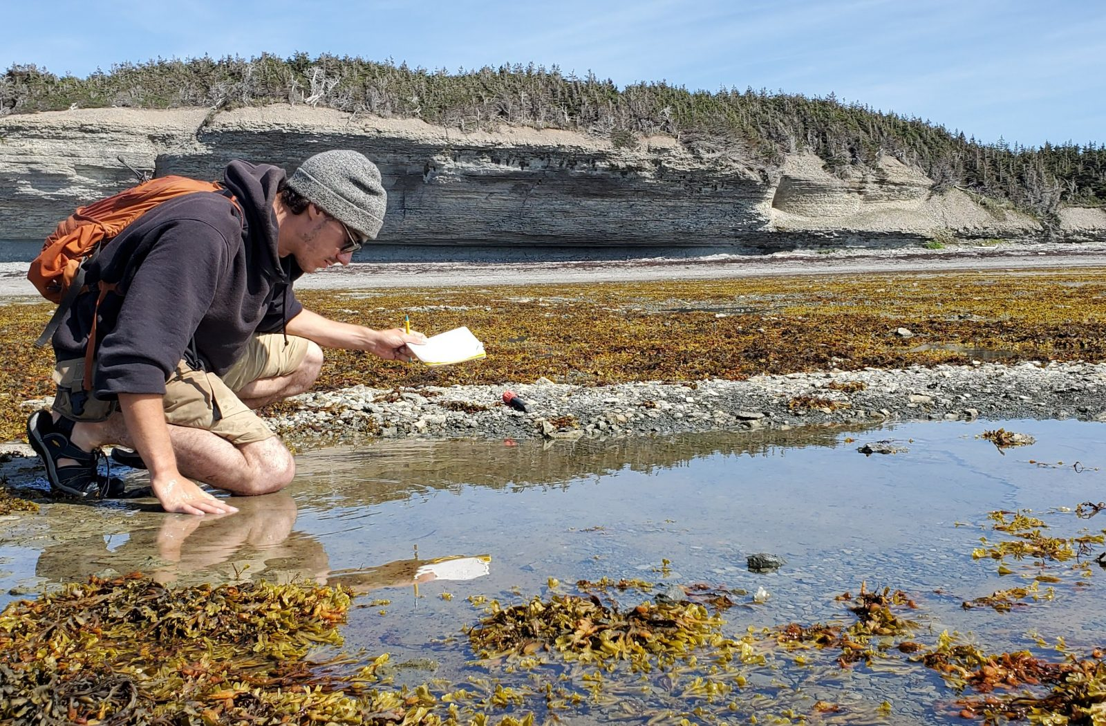 Reading Between the Rocks: The Return to Anticosti