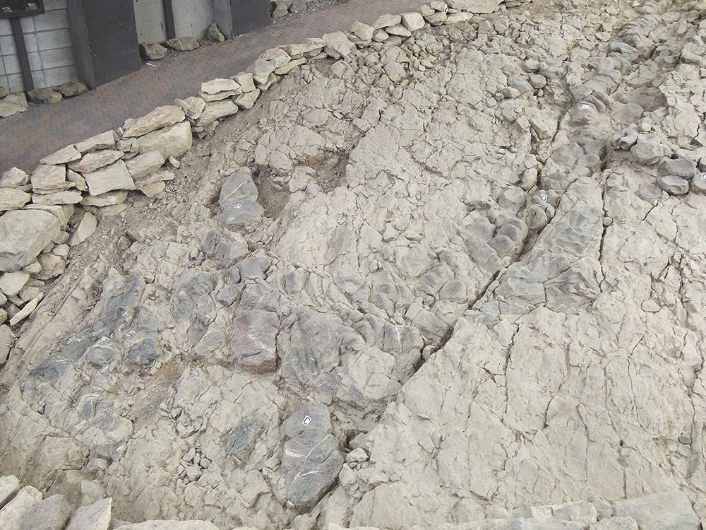 Day 3: Berlin-Ichthyosaur State Park
