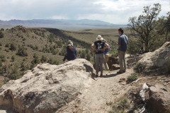 Day 3: Hickison Petroglyph Recreation Area