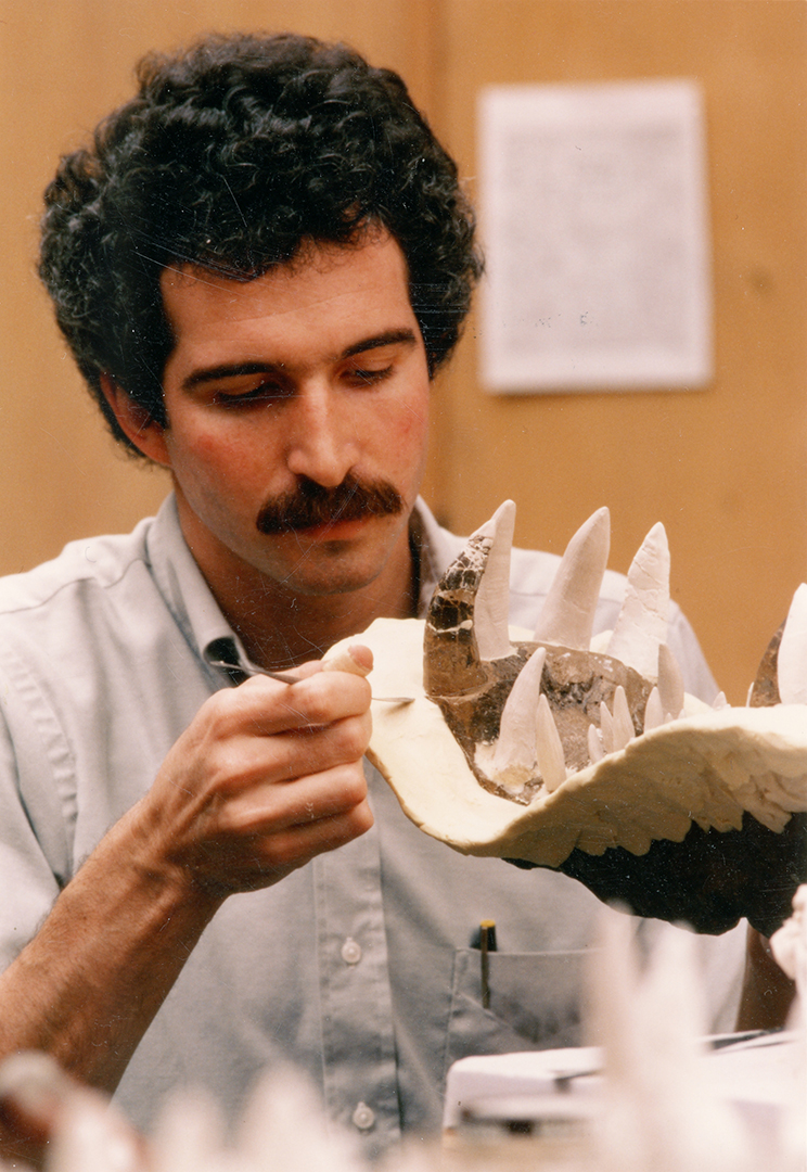 Mark circa 1986 molding a phytosaur skull in the prep lab